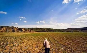 土地被征征收,失地农民的社保谁来负责?