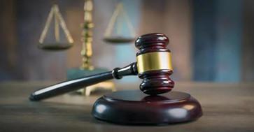 房屋被非法强制拆除树木被损毁,律师助力争取国家赔偿