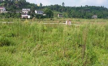 农村集体土地使用权被收回会有补偿吗?