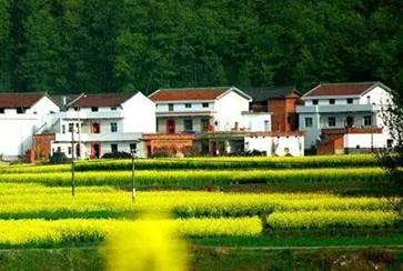 陕西省发布农村宅基地申请审批规范化流程