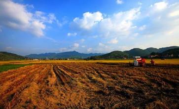 农村集体土地征收本村未成年人可以获得集体土地征收赔偿款吗?