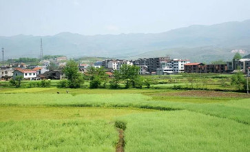 广东省村庄规划全面优化提升三年行动计划公布,2021-2023年行动计划提上日程