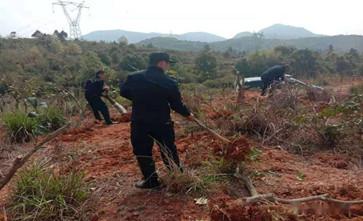 征收拆迁公告公布的时候抢栽、抢种、抢建行为是否合法?