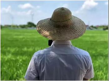 农村集体经营性建设用地入市要点