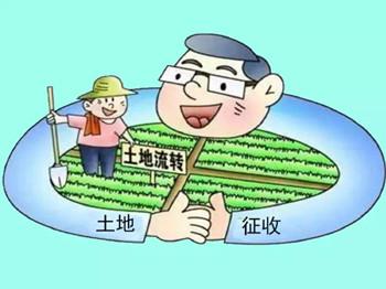 农村承包地流转后,征收补偿款该给谁?