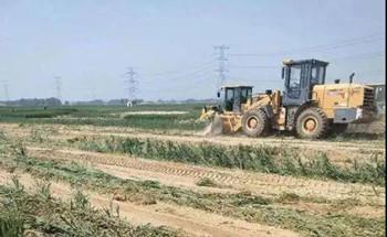 村民不愿意将涉事麦地流转给养殖企业,120亩麦地被强铲