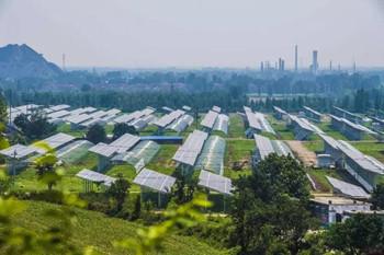 耕地建房违法吗?设施农业类建设占用耕地属不属违建?